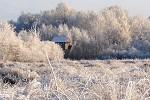 Winterliches Venn  (Foto: L. Klasing)