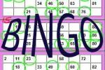 bingo_Schrift